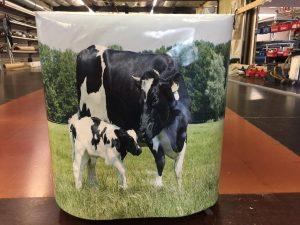 Koeien fullcolour bedrukking
